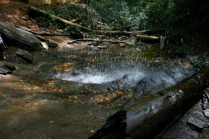 Pisgah Forest 9-30-12 63.jpg