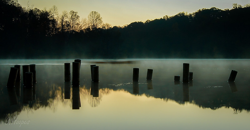 among_the_pileings-choopes-marsh_creek_20141025_1229922789.jpg