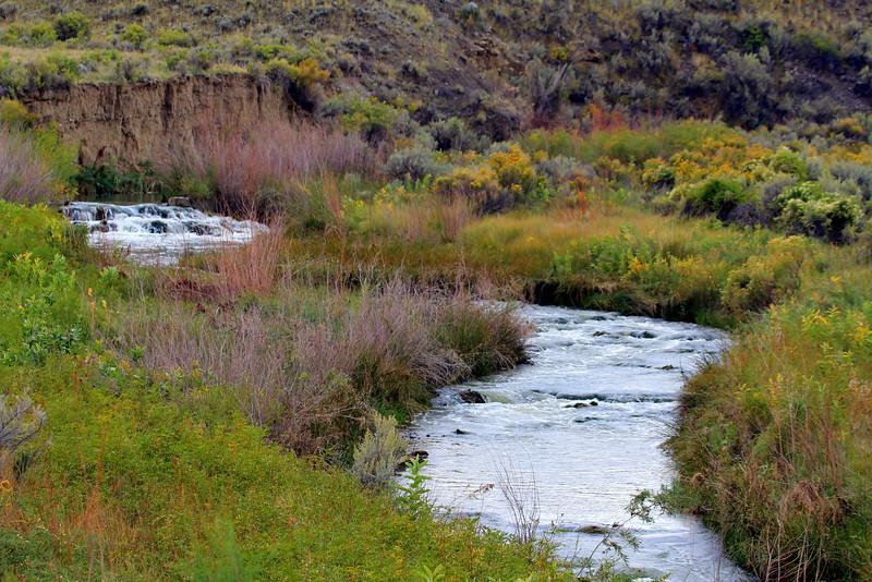Yellowstone Best of-365.JPG