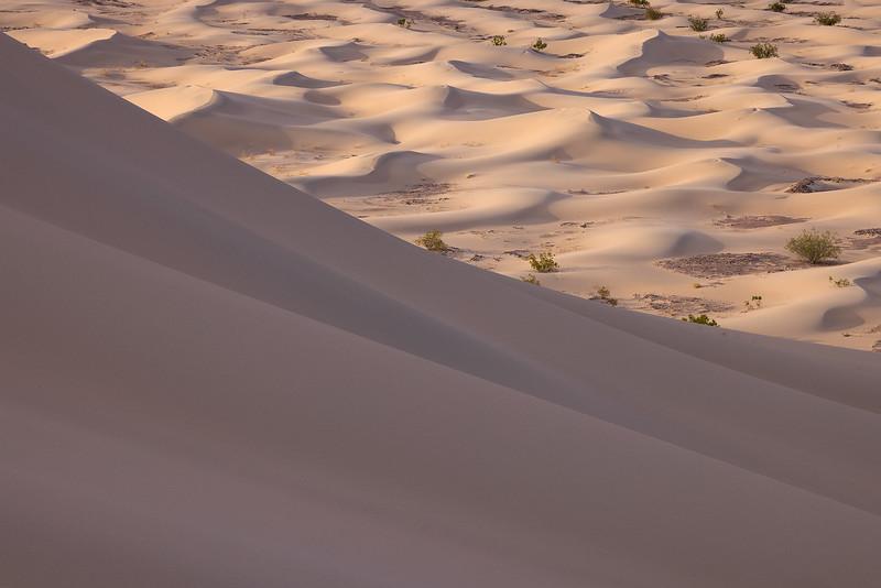 Wee Dunes