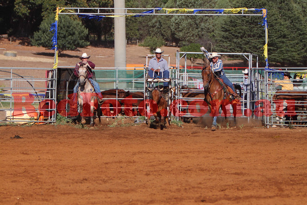 2009 02 07 Byford Rodeo Steer Wrestling