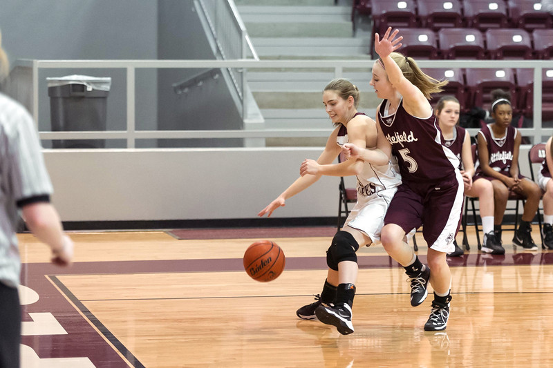 Lady Lopes JV BB vs Littlefield,1-24-2014