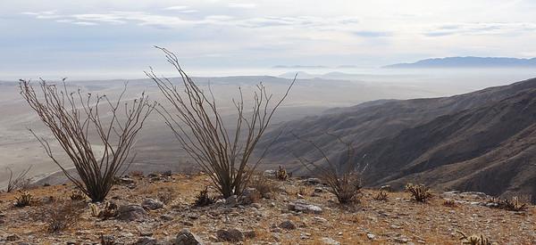 Coyote Mountain (3,192) - Dec 31, 2017