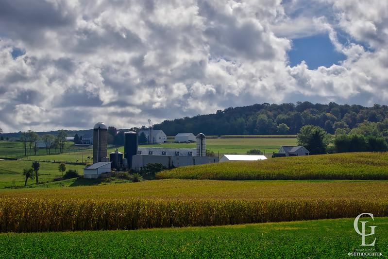 1053 - Autumn 2016 - Valley Farms East Earl (p,b).jpg