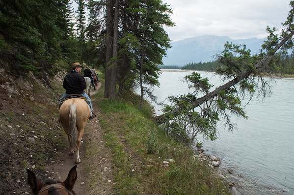 2014-08-26 Jasper Horse Ride