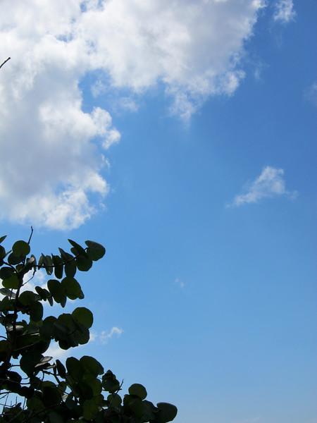 20120103-120756_BE7f_Canon PowerShot S95.jpg