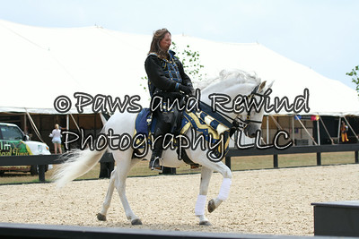 Sunday: Medieval Times Exhibition