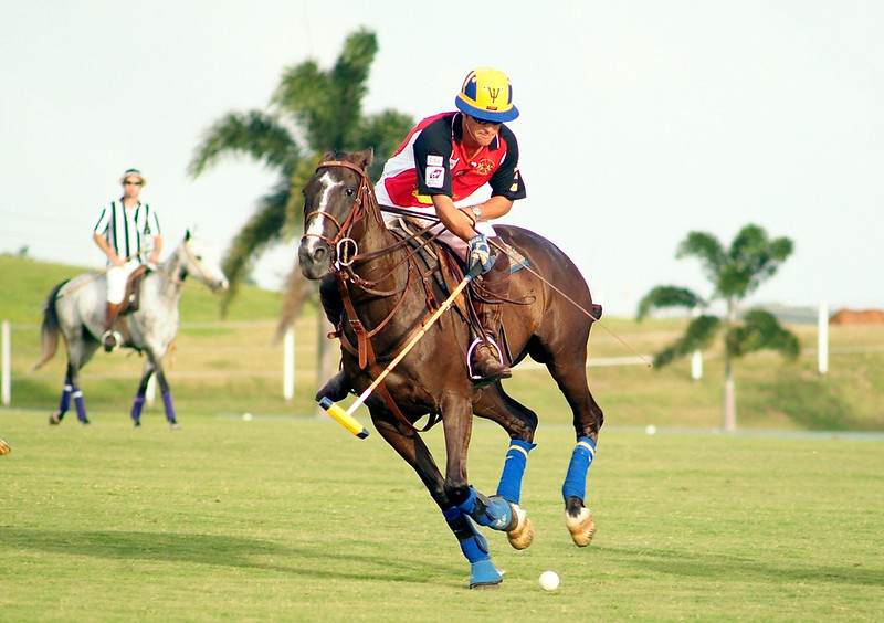 Polo in Barbados