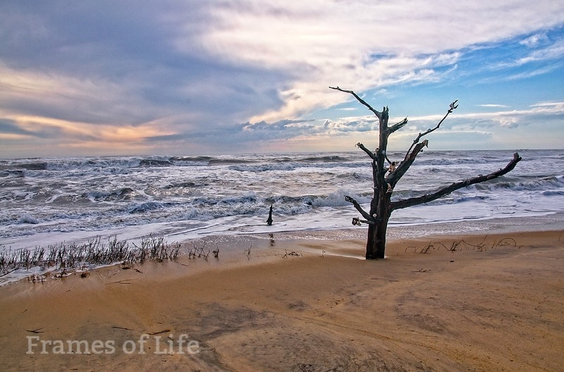 Chincoteague Island Beach