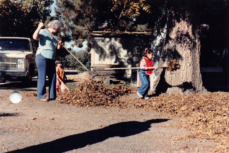 Raking pecan leaves, Oct 1985. Frankie, Josh, Alaya