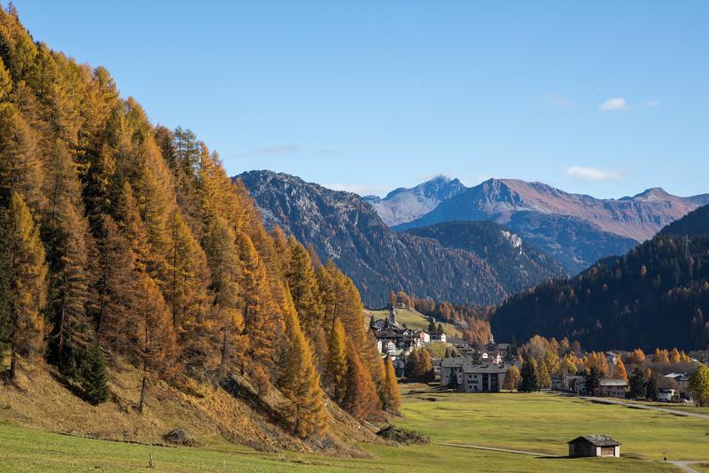 Herbst-im-Rheinwald--3.jpg