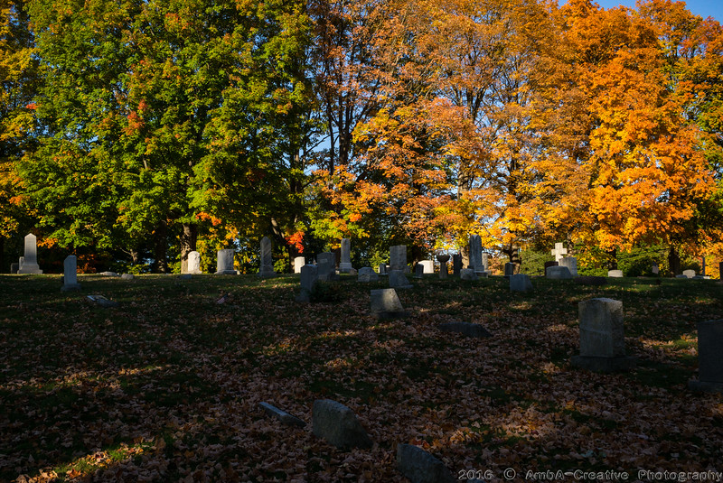 2016-10-19_Fall_Colors@MeridenCT_03.jpg