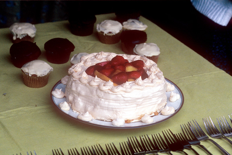 1991-06 Gram's 99th Birthday Cake Made By Chris.jpg