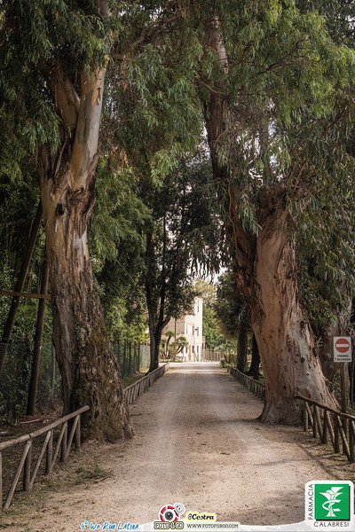 Foto Gara Sandra Cestra _ Farmacia Calabresi