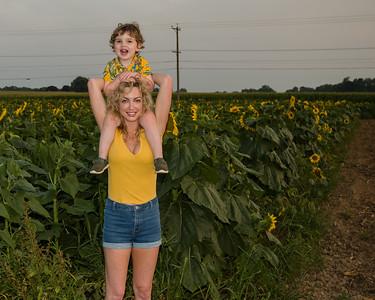 Sunflowers 2021