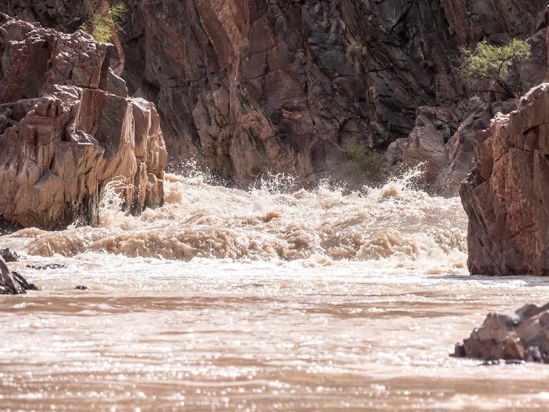 Grand Canyon-238.jpg