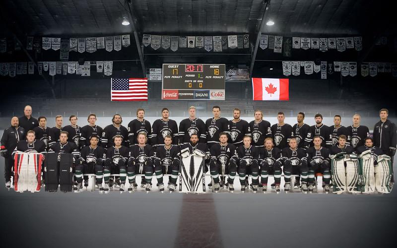 WSC Hockey 2017-2018