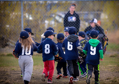 2018 AOR T-Ball Season - Yankees