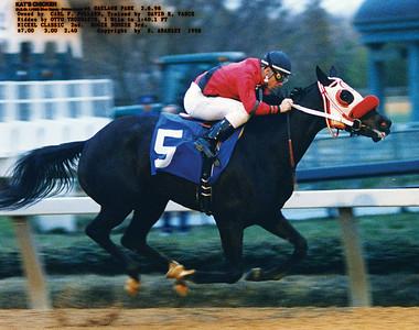 KAT'S CHICKEN - 2/06/1998