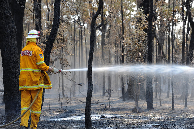. A firefighter douses smoldering trees from the Deans Gap fire near Nowra on the south coast of Australia\'s New South Wales state on January 9, 2013. Cooler conditions helped firefighters battling blazes across Australia on January 9 but up to 30 fires were still out of control. AFP PHOTO / Greg  WOOD/AFP/Getty Images
