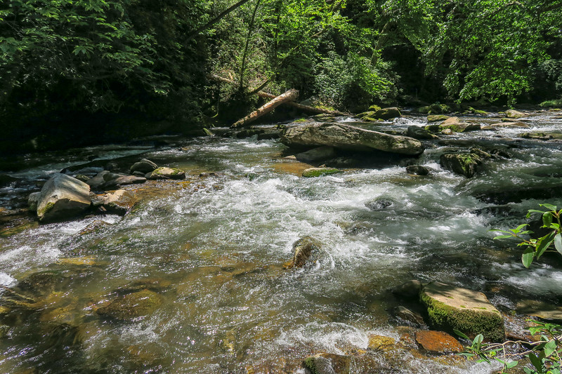 North Fork French Broad River -- 2,380'