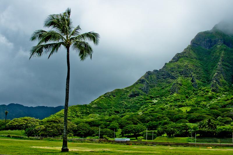 Journey into Oahu Photograph 59