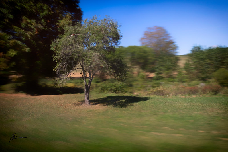 1571-Edit.jpg
