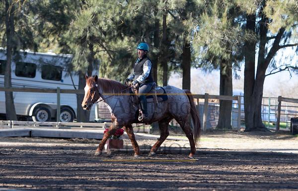 Rider 235