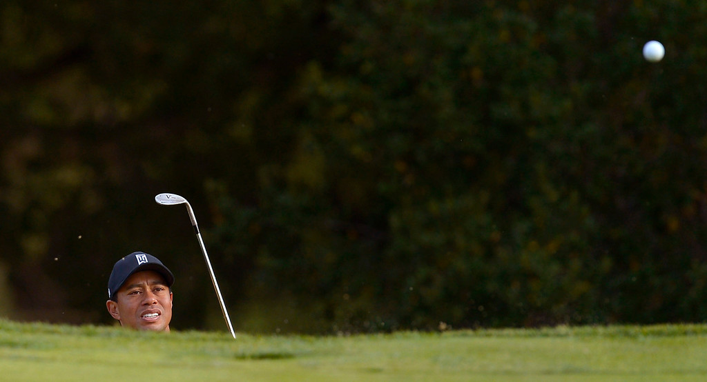 . Tiger Woods hits out of a greenside bunker on the 18th hole during the final round of the Northwestern Mutual World Challenge golf tournament at Sherwood Country Club, Sunday December 8, 2013, in Thousand Oaks, Calif.   Zach Johnson would go on to beat Woods on a playoff hole.(Andy Holzman/Los Angeles Daily News)