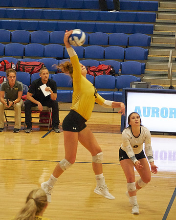 University of Wisconsin Oshkosh Womens Volleyball