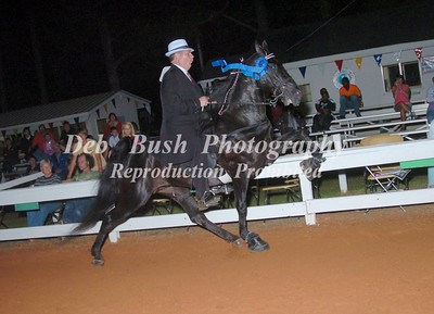 CLASS 36  WALKING PONY ADULT RIDER SPECIALTY AMATEUR
