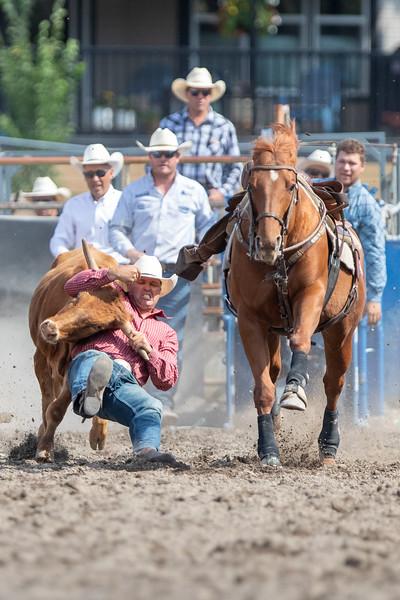 2019 Rodeo 1 (557 of 1297).jpg