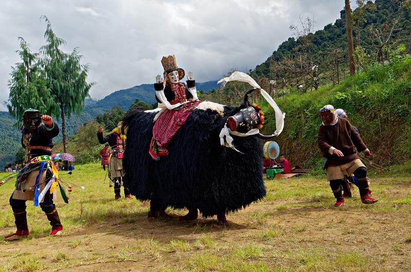 Yak Dance-Brokpa festival
