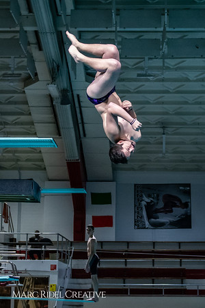 Broughton diving. November 28, 2018, MRC_3650