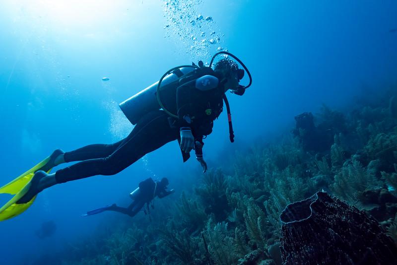 Scuba divers underwater, Dive Site, East Wall, Belize