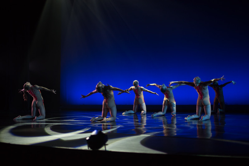 170714 New Dances 2017 (Photo by Johnny Nevin)_2369.jpg