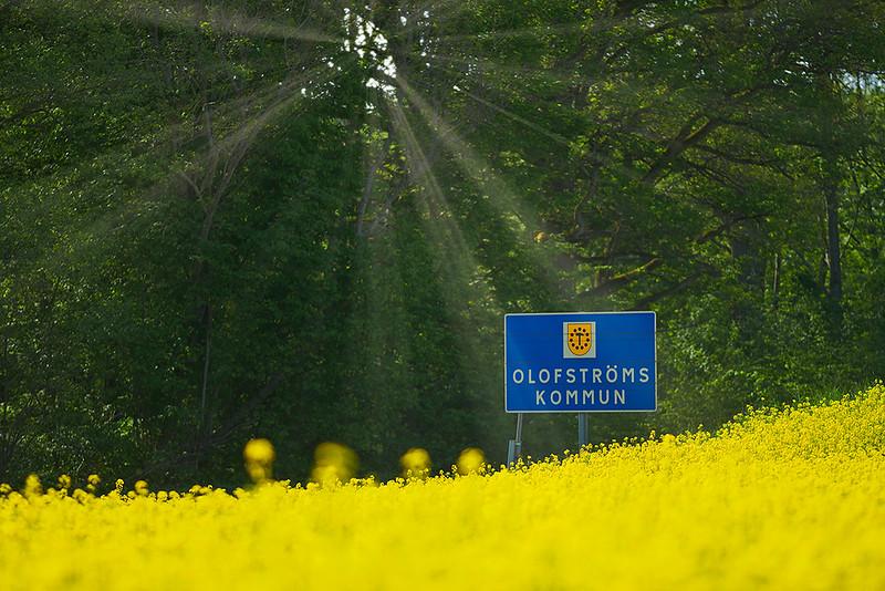 olofstrom_vildmark_18-05-18__8504384_lowres.jpg