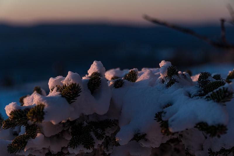 2019-12-06_SN_KS_December Snow-05254.jpg