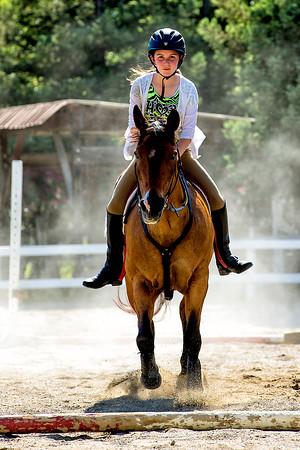 2013 2014 Horses at Leanderhill Farm
