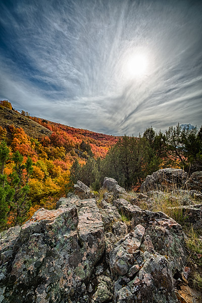 Sunlit Fall in Dry Canyon