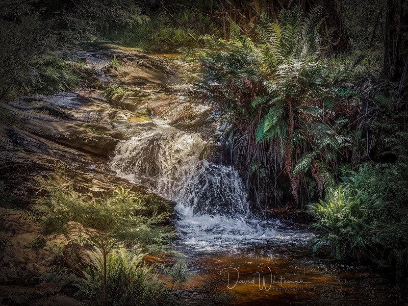 Kedumba River Maple Grove Park