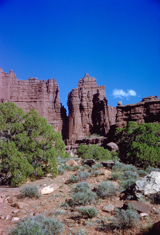 630518 Fishers Towers, Arches National Park