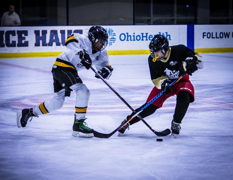 Bruins-101.jpg