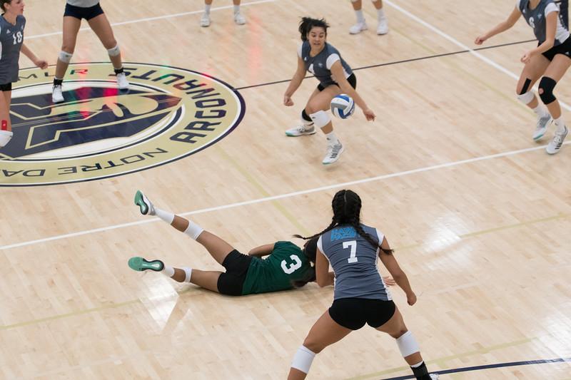HPU Volleyball-92796.jpg