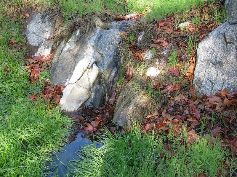 running creek water