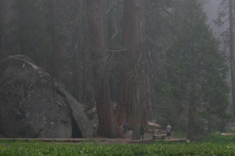 California Day 6 Kings Canyon 05-30-2017 115.JPG