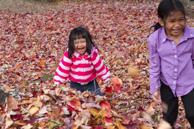 Autumn-Cleaning-2013-16.jpg