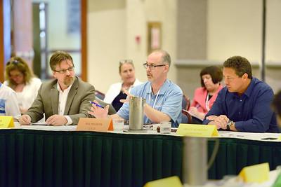 Committee, Board of Directors Meetings