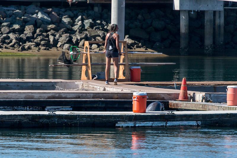 Intuit_Boat_2014-1161.jpg