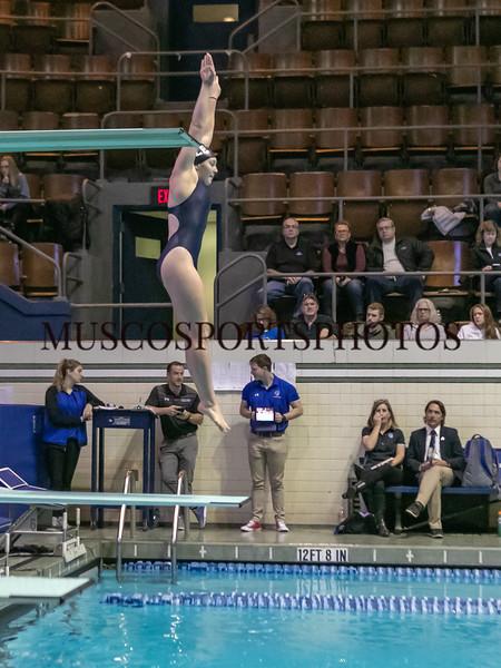 Swimming-diving vs Seton Hall_1273.jpg